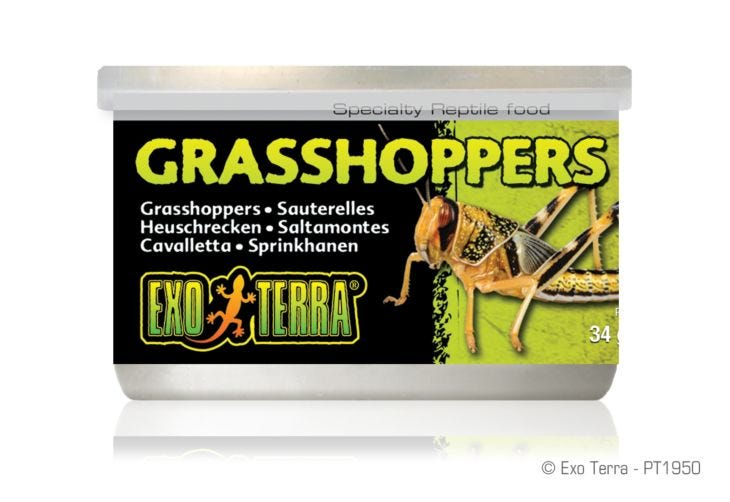 Exo Terra Grasshoppers - Specialty Canned Reptile Foods