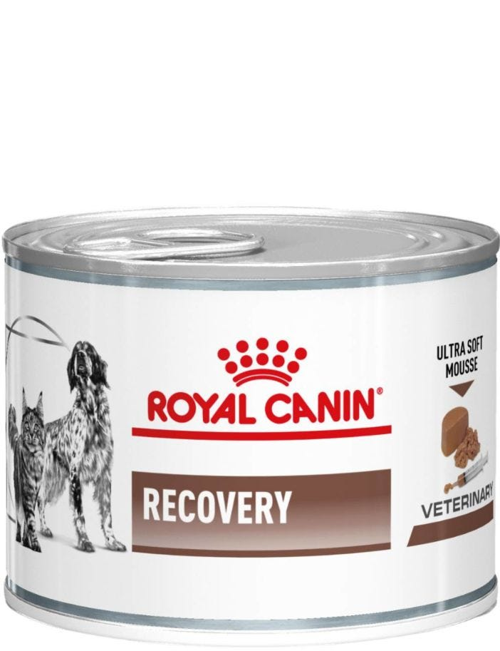 Royal Canin FVD/CVD Recovery Canned - Veterinary Diets