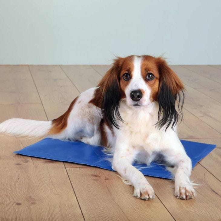 Trixie Dog Support Cooling Mat With Cooling Gel Blue
